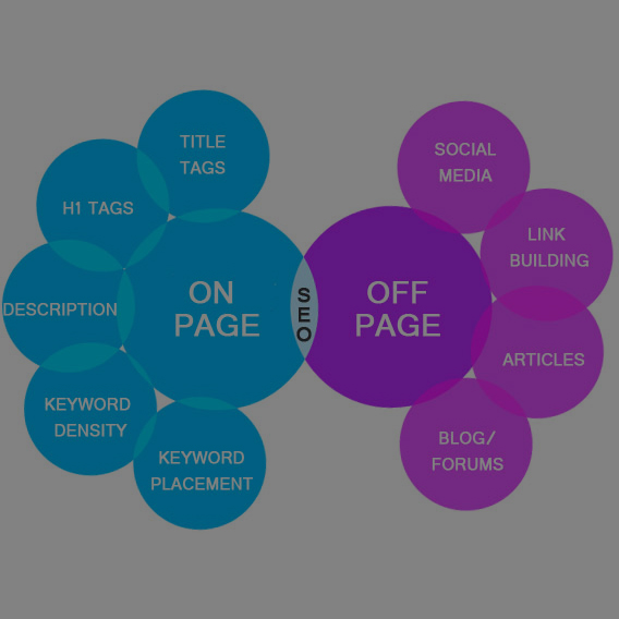 SEO and SEM Services That Produce Results